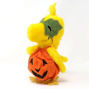 Pumpkin Woodstock