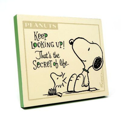 Snoopy and Woodstock 'Secret of Life' Plaque