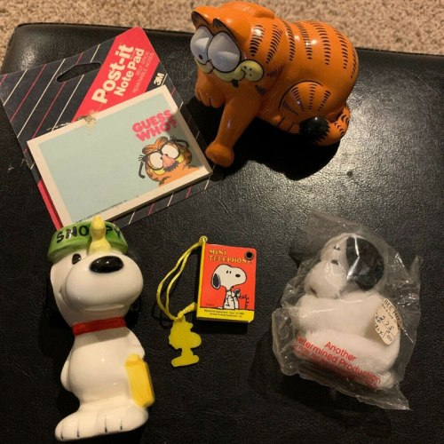 Snoopy and Garfield Lot