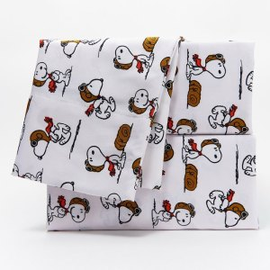 Snoopy Sheets & Berkshire Blankets from QVC