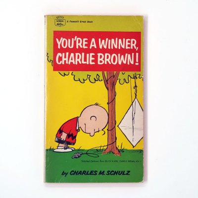 You're a Winner, Charlie Brown Book