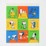 Snoopy & Woodstock Scenes Stickers