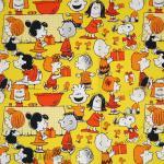 Peanuts Gang Party Gift Wrap