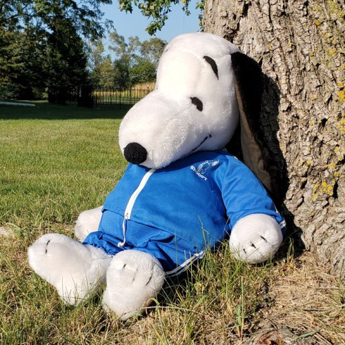 Big Snoopy Blue