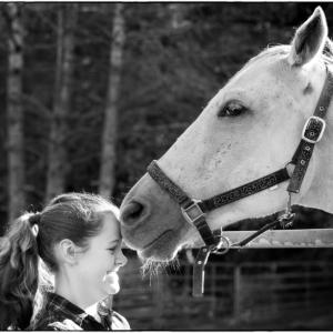 Girl head to nose with white stallion