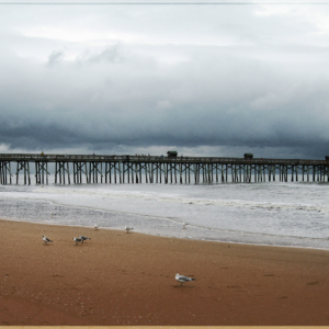 Long pier stretching into the Atlantic Ocean with shore birds on the sand