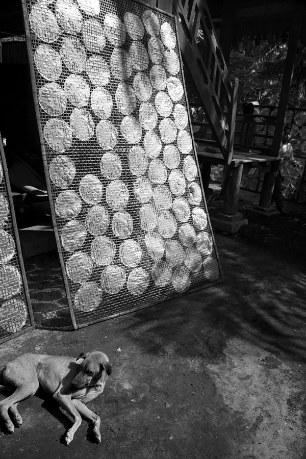 Gutwein Cambodia_-31WEB