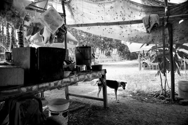 Gutwein Cambodia_-37WEB