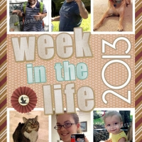 2013 Week in the Life - Cover