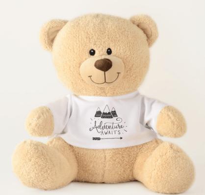 Teddy Bear shower decoration