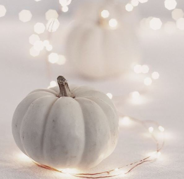 white pumpkin display with string lights