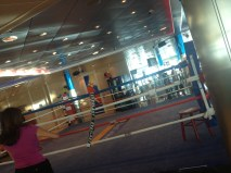 Boxing rink