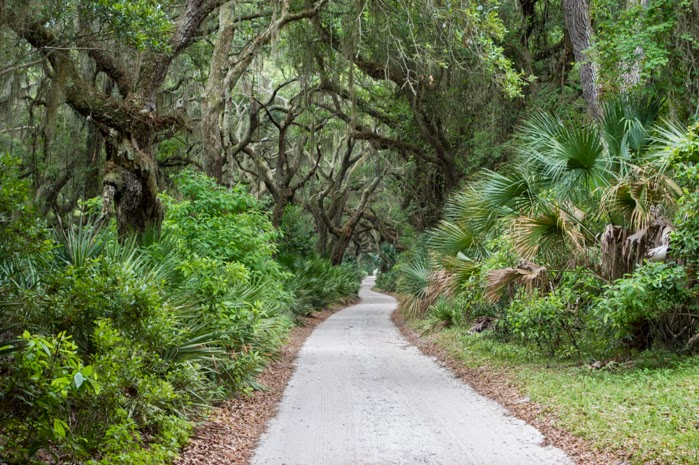 bike path cumberland island georgia