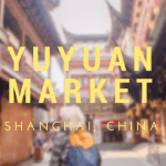 YUYUAN MARKET: WHERE I BEGAN MY DESCENT INTO DUMPLING ADDICTION
