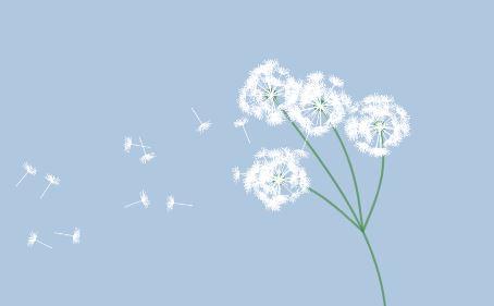 Desmos Spring