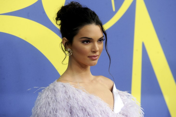 Kendall Jenner at the 2018 CFDA awards in a purple dress