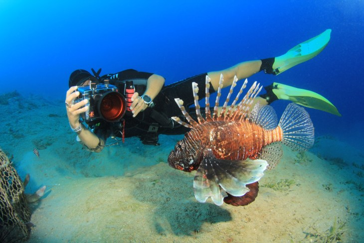 Woman takes underwater photo of a Lion Fish
