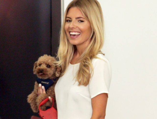 Mollie King of The Saturdays holds her toy poodle Alfie whilst outside the ITV studios Featuring: Mollie King, Alfie Where: London, United Kingdom When: 10 Jun 2014 Credit: Rocky/WENN.com