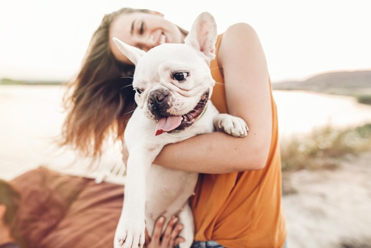 Woman holding her white french bulldog