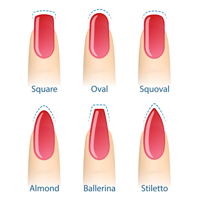 Six different nail shapes illustrated: square, oval, squoval, almond, ballerina, stiletto