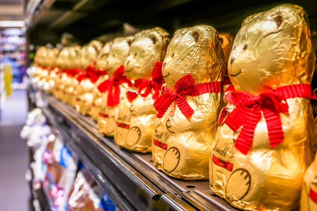 Lindt Swiss Chocolate Golden Bears Chocolate Row ready for Christmas Presents for Sale in a Shop of Milan,Italy