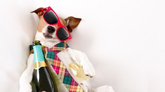 The 6 Most Common Hangover Cures That Turn Out To Be Myths