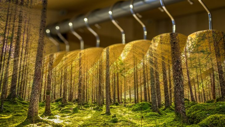 A rack of hangers that flow into a forrest.