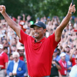 Return of the Roar: The Tale of Tiger's Remarkable Renaissance