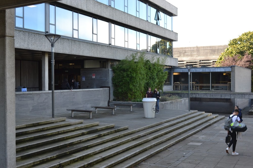 ucd newman building