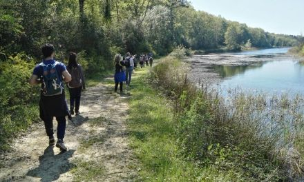 """WORLD MIGRATORY BIRD DAY"": CON GAIA UNA PASSEGGIATA FRA BIRD-WATCHING E FOTO NATURA"