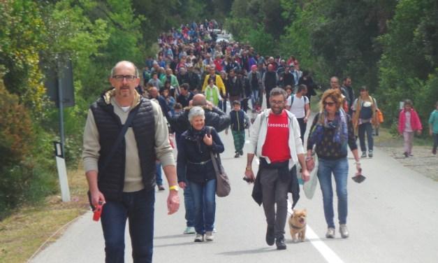 25 APRILE: COLOGNOLE E IL COMUNE TUTTO IN FESTA PER LA 14ESIMA EDIZIONE DELLA CAMMINATA DELLA PACE