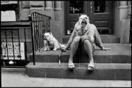 © Elliot Erwitt dogs