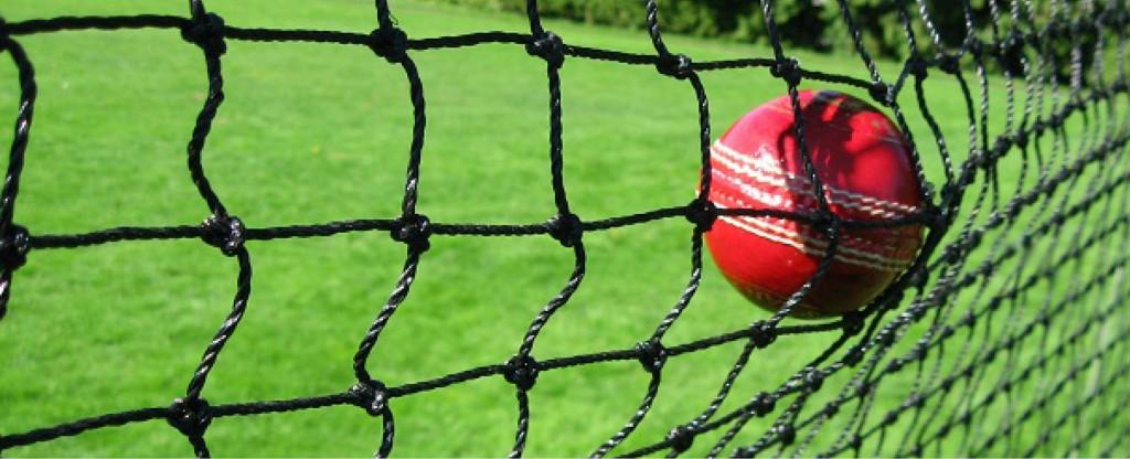 Cricket perimeter