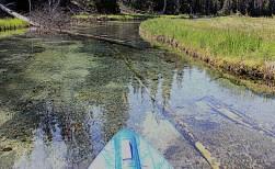 Paddling up Quinn Creek