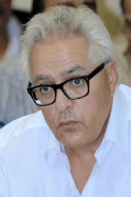 Mohamed Sghir JANJAR