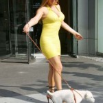 Mariah Stole My Dress…