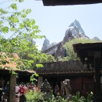 Disney: Animal Kingdom & Back to The Magic Kingdom