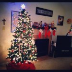 Day 27: Tree.  Our Christmas tree is up :)