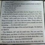 HarryPotter-SorcerersStone-coasters-3