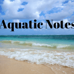 Aquatic Notes