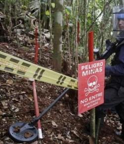 Vaker landmijnen ingezet om cocavelden te beschermen