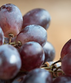 Colombiaanse druivenexport groeide in 2020 met 600%