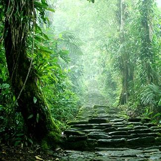 Nationale parken Colombia