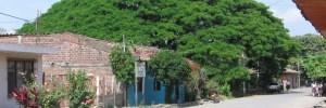 Департамент Валье дель Каука