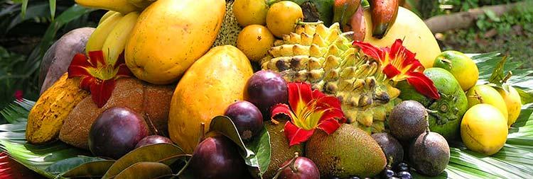 Свежие и сушеные рекомендуется употреблять свежие спелые фрукты преимущественно