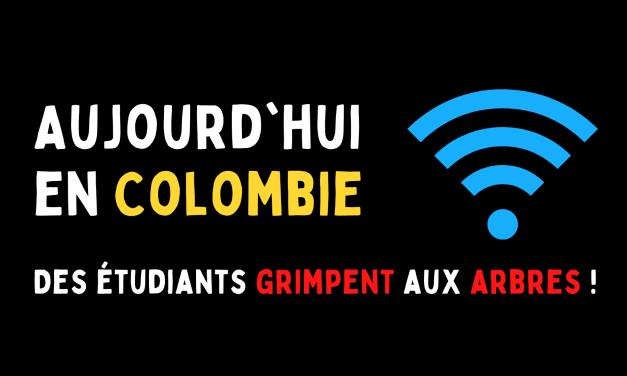 Aujourd'hui en Colombie : Des étudiants grimpent aux arbres !