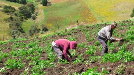 colombia onu campesinos derechos