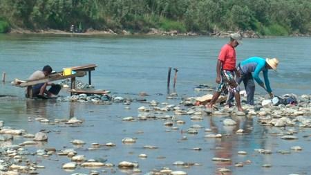 río cauca hidroituango