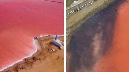 mar rosado colombia turismo