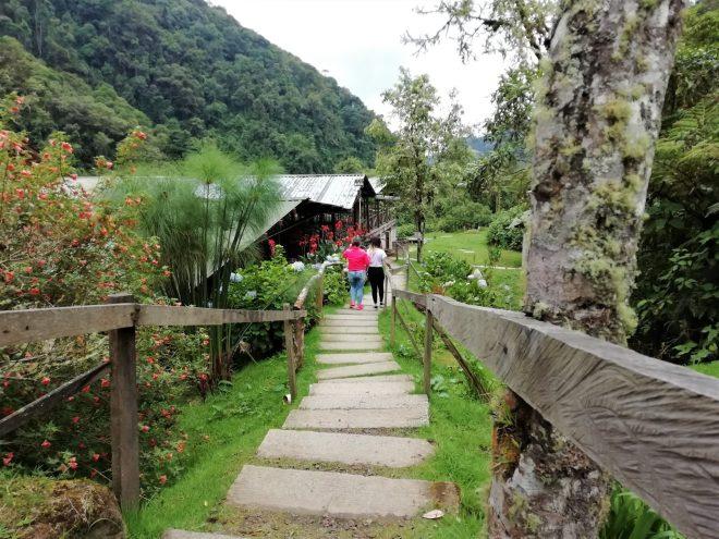 Termales de San Vicente - Santa Rosa de Cabal - Reserva Natural - Eje Cafetero - Colombia - Plan con Transporte 1- Mamá